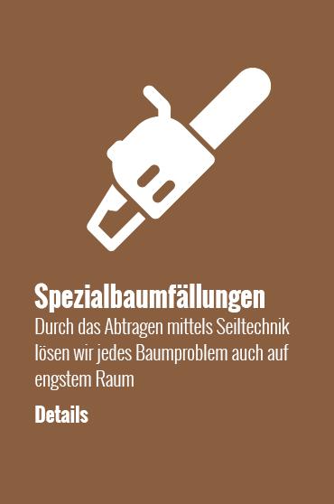 icon-spezialbaumfaellungen-obstbaumschnitt-details-Kopie