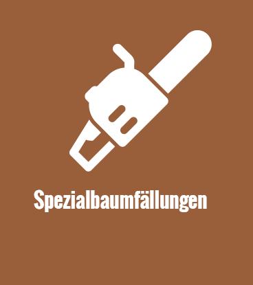 monz-icon-spezialbaumfaellungen